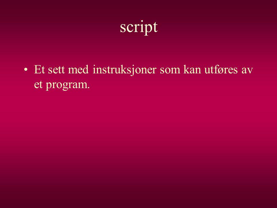 script Et sett med instruksjoner som kan utføres av et program.