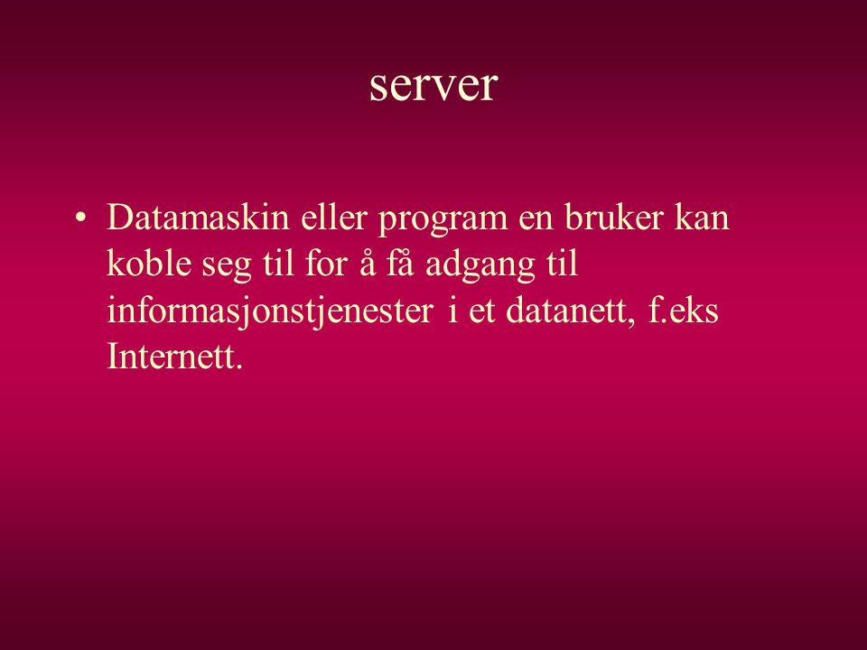 server Datamaskin eller program en bruker kan koble seg til for å få adgang til informasjonstjenester i et datanett, f.eks Internett.