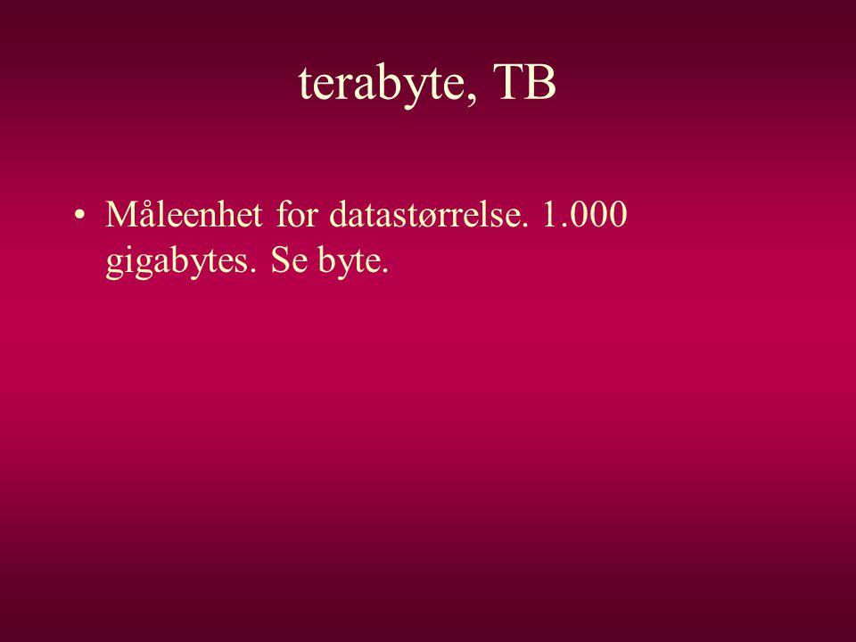 terabyte, TB Måleenhet for datastørrelse. 1.000 gigabytes. Se byte.
