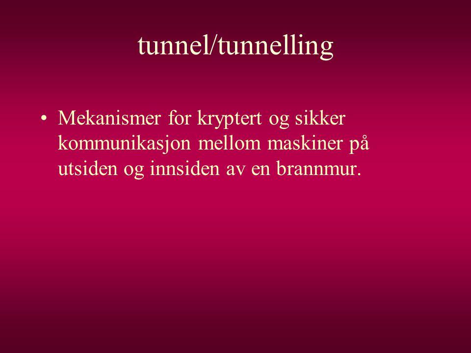 tunnel/tunnelling Mekanismer for kryptert og sikker kommunikasjon mellom maskiner på utsiden og innsiden av en brannmur.