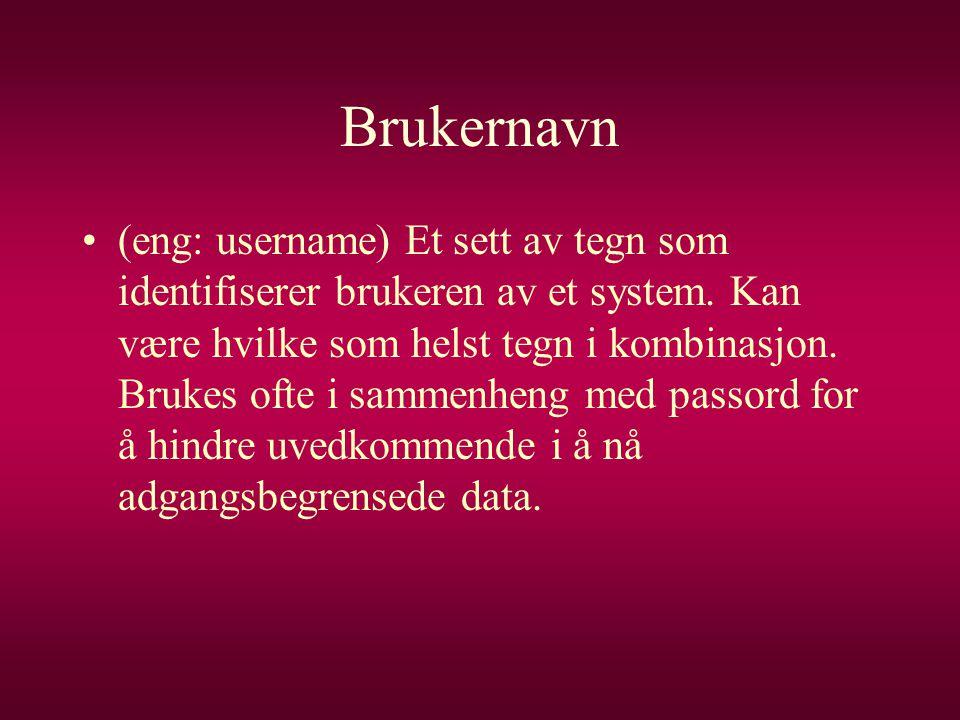 Brukernavn