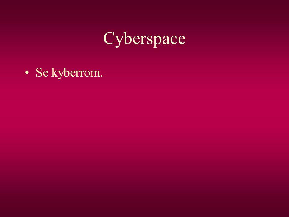 Cyberspace Se kyberrom.