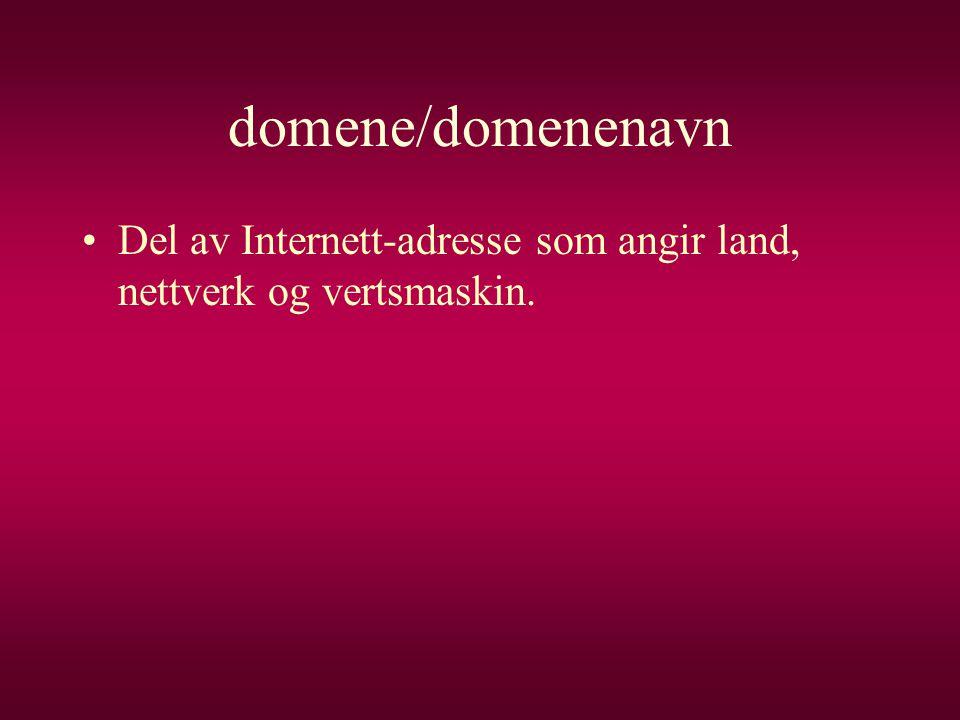 domene/domenenavn Del av Internett-adresse som angir land, nettverk og vertsmaskin.
