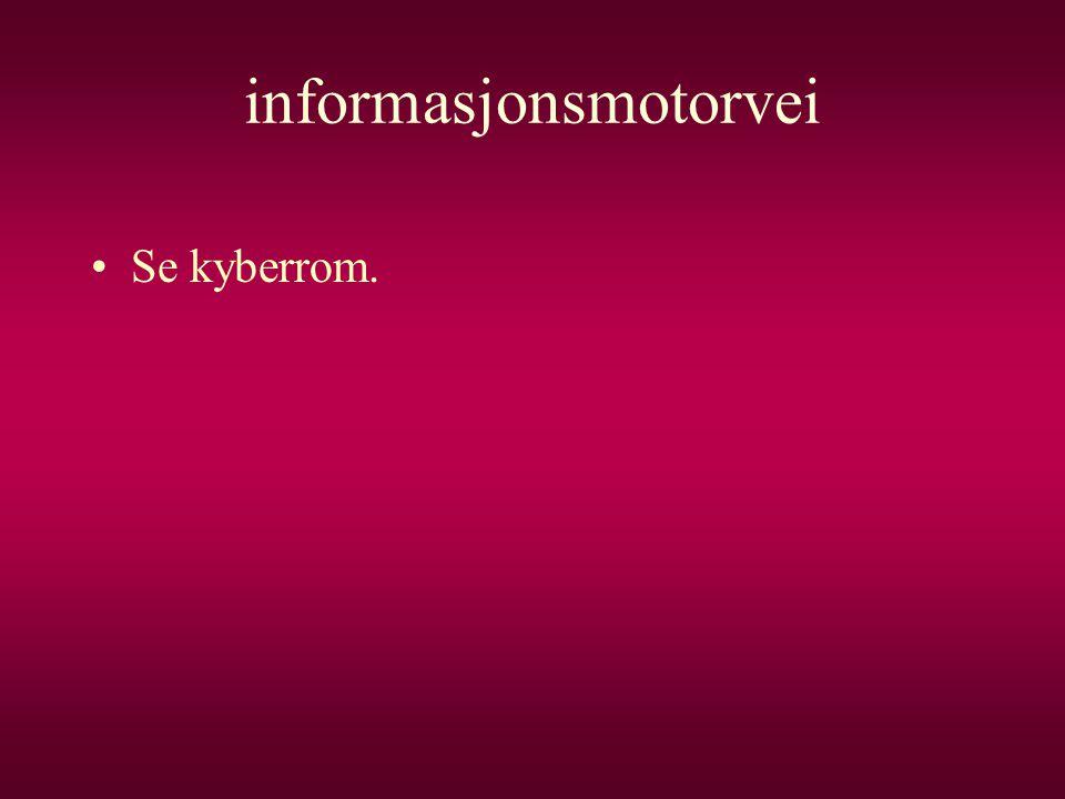 informasjonsmotorvei