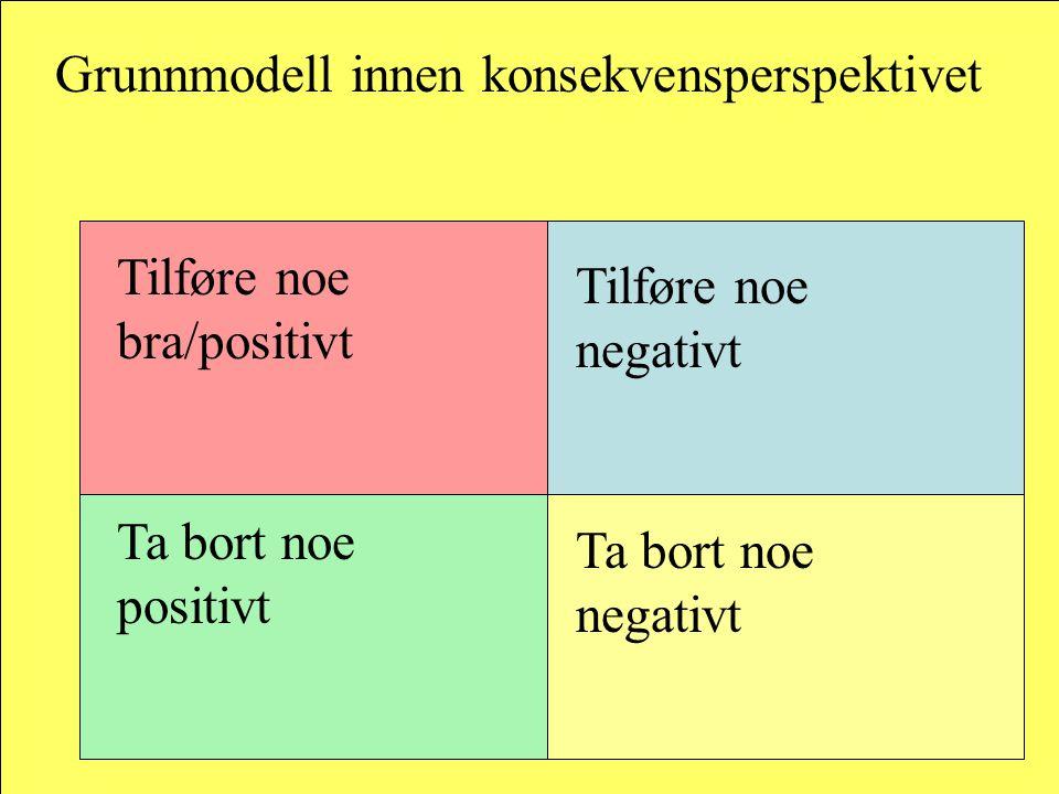 Grunnmodell innen konsekvensperspektivet