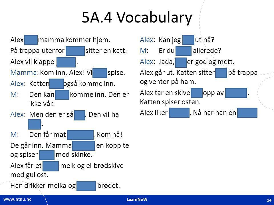 5A.4 Vocabulary