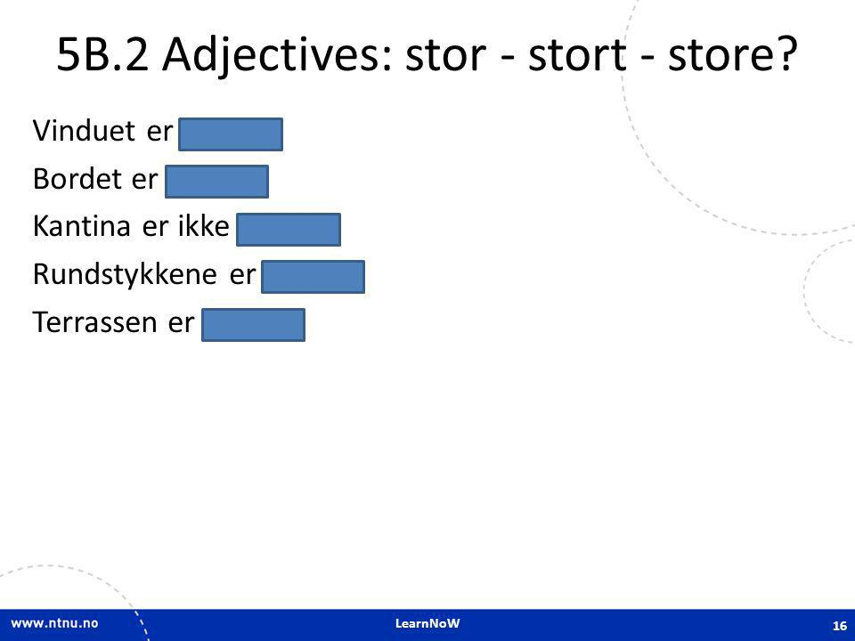 5B.2 Adjectives: stor - stort - store
