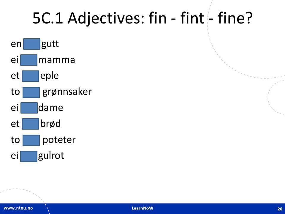 5C.1 Adjectives: fin - fint - fine