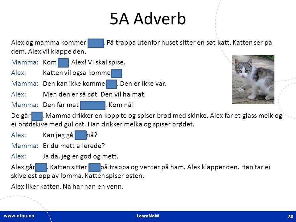 5A Adverb