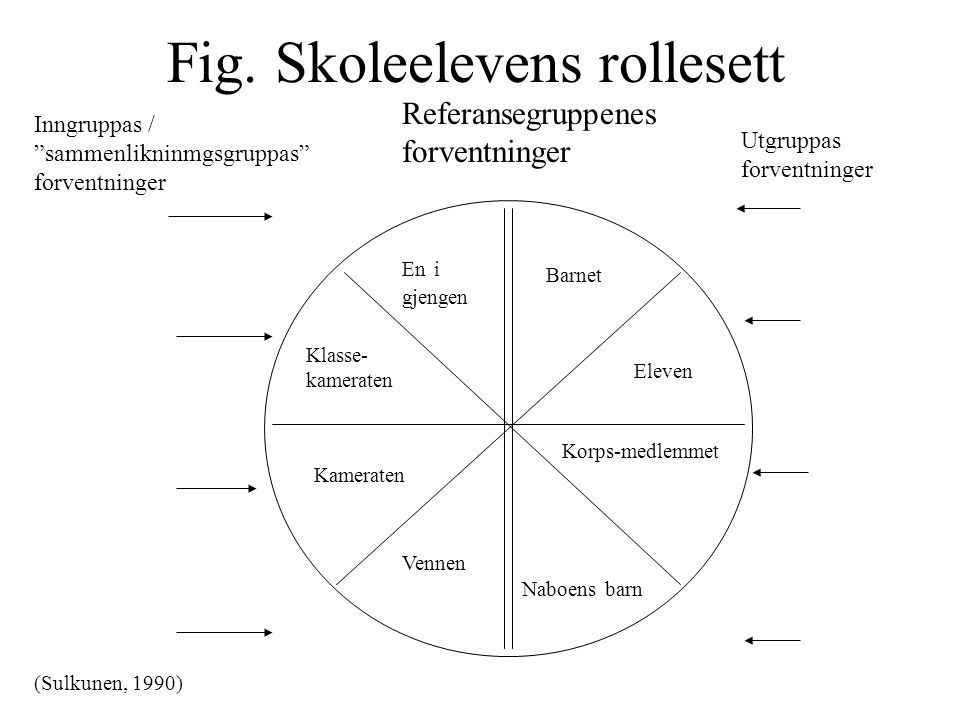 Fig. Skoleelevens rollesett