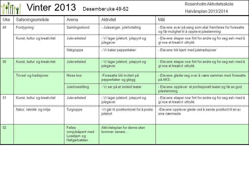 Vinter 2013 Desember uke 49-52 Rosenholm Aktivitetsskole