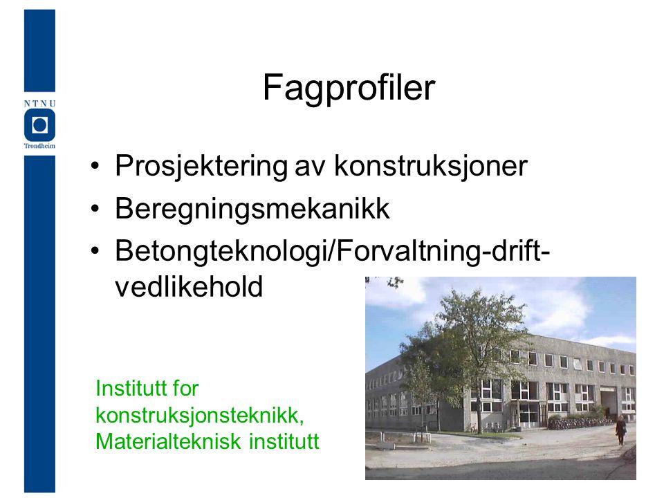 Fagprofiler Prosjektering av konstruksjoner Beregningsmekanikk
