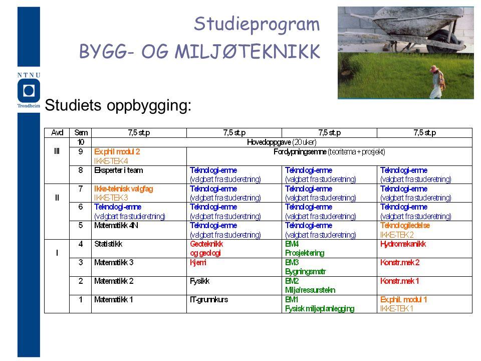 Studieprogram BYGG- OG MILJØTEKNIKK Studiets oppbygging: 4
