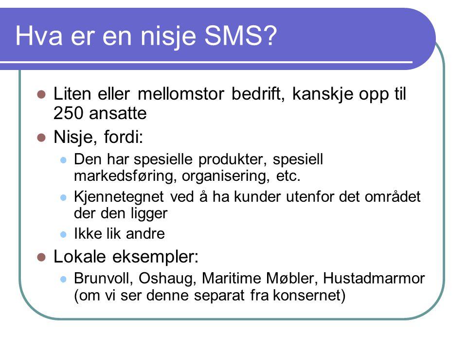 Hva er en nisje SMS Liten eller mellomstor bedrift, kanskje opp til 250 ansatte. Nisje, fordi: