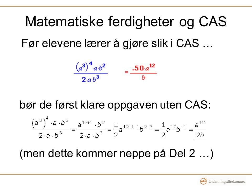 Matematiske ferdigheter og CAS