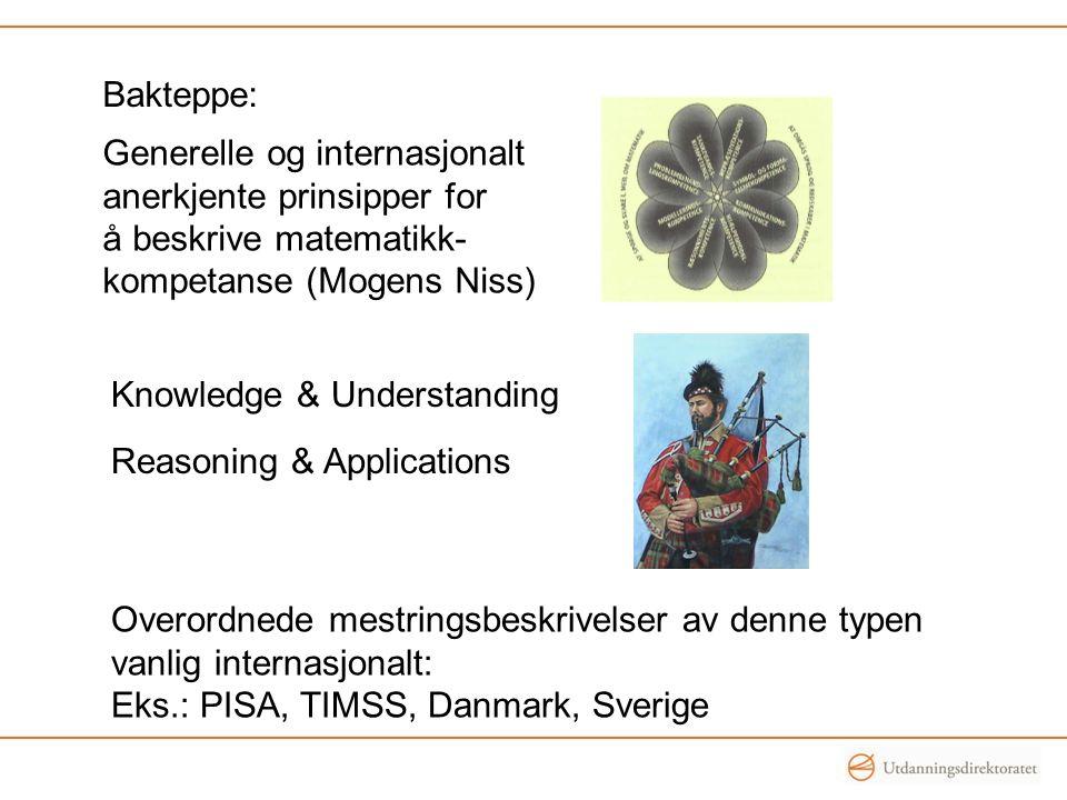 Bakteppe: Generelle og internasjonalt. anerkjente prinsipper for. å beskrive matematikk- kompetanse (Mogens Niss)