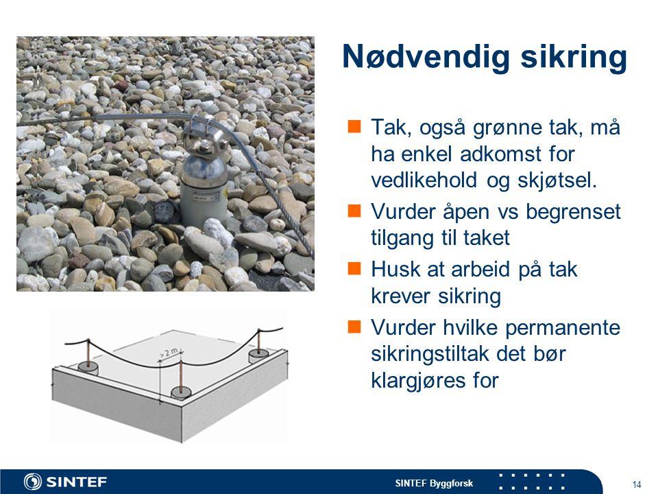 Nødvendig sikring Tak, også grønne tak, må ha enkel adkomst for vedlikehold og skjøtsel. Vurder åpen vs begrenset tilgang til taket.