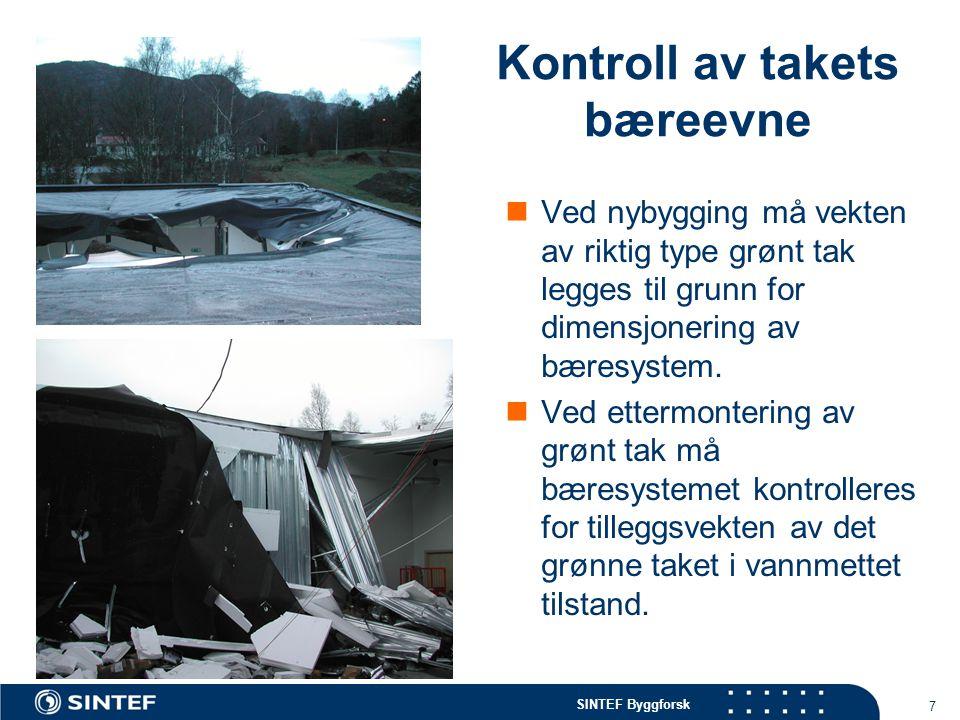 Kontroll av takets bæreevne