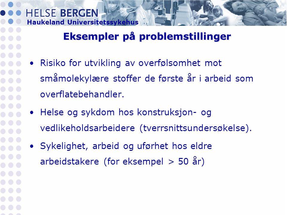 Eksempler på problemstillinger