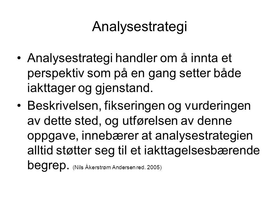 Analysestrategi Analysestrategi handler om å innta et perspektiv som på en gang setter både iakttager og gjenstand.