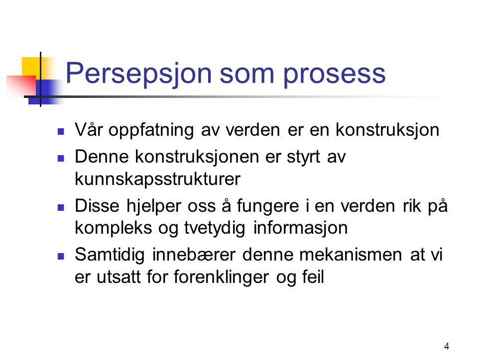Persepsjon som prosess