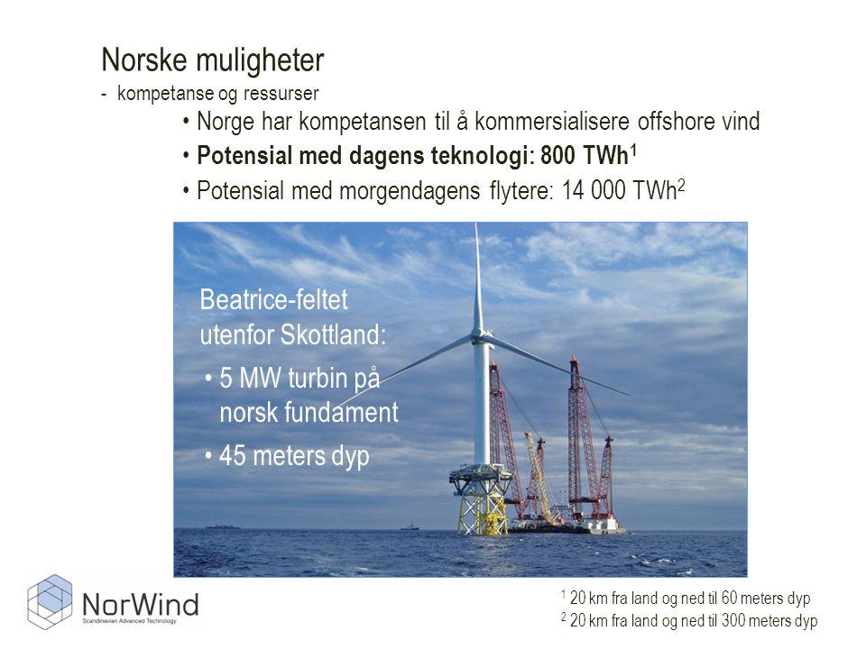 Norske muligheter - kompetanse og ressurser