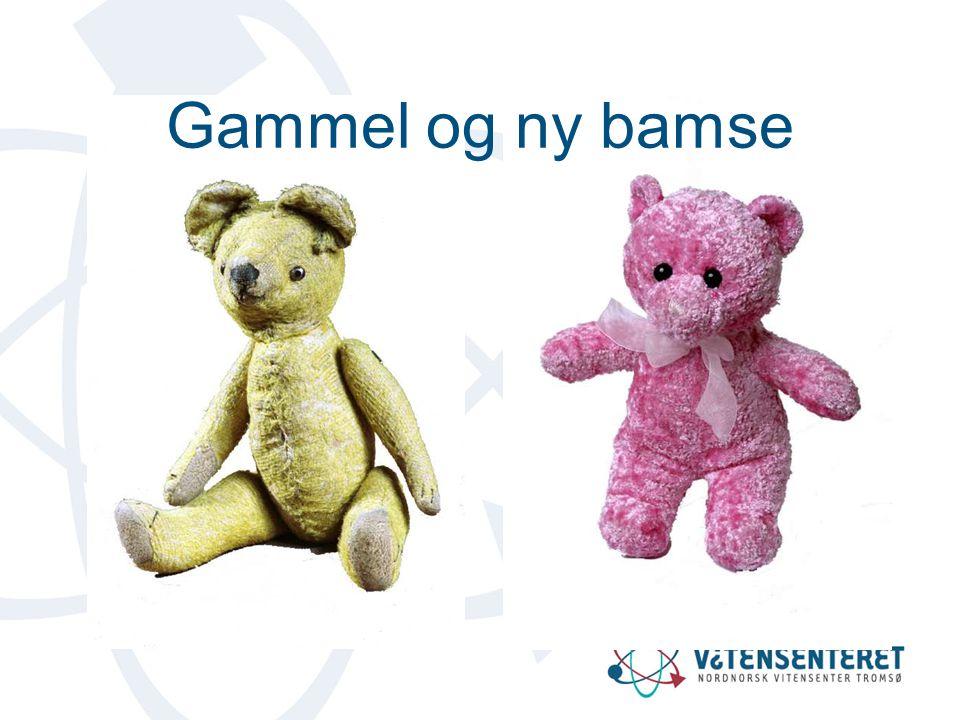 Gammel og ny bamse