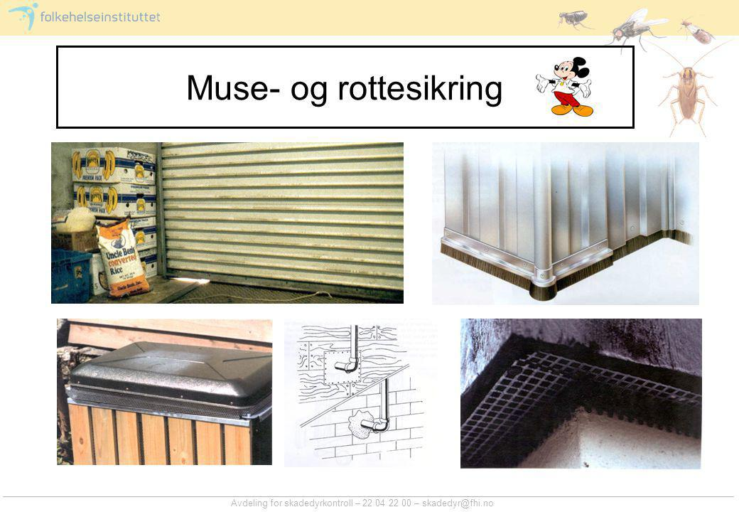 Muse- og rottesikring Avdeling for skadedyrkontroll – 22 04 22 00 – skadedyr@fhi.no