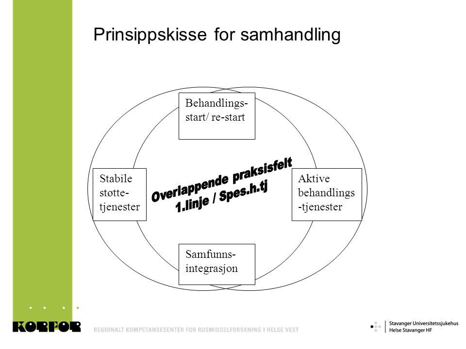 Prinsippskisse for samhandling