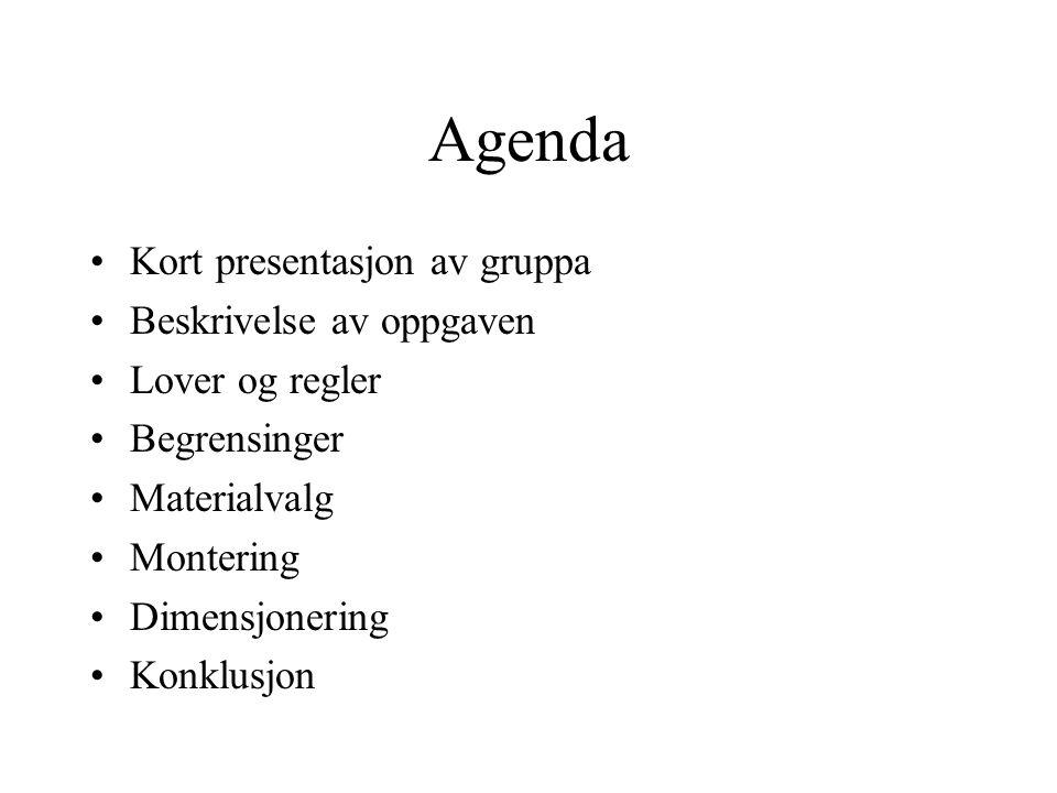 Agenda Kort presentasjon av gruppa Beskrivelse av oppgaven