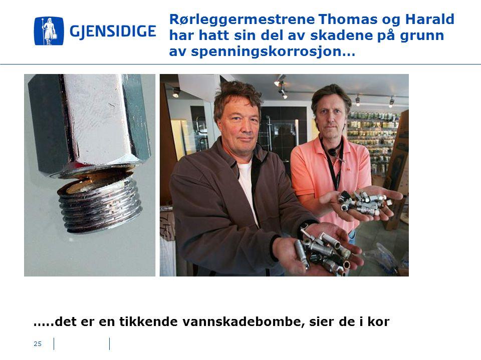 Rørleggermestrene Thomas og Harald har hatt sin del av skadene på grunn av spenningskorrosjon…