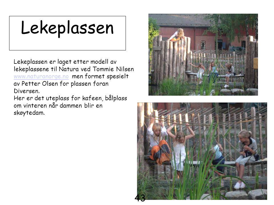 Lekeplassen Lekeplassen er laget etter modell av lekeplassene til Natura ved Tommie Nilsen.