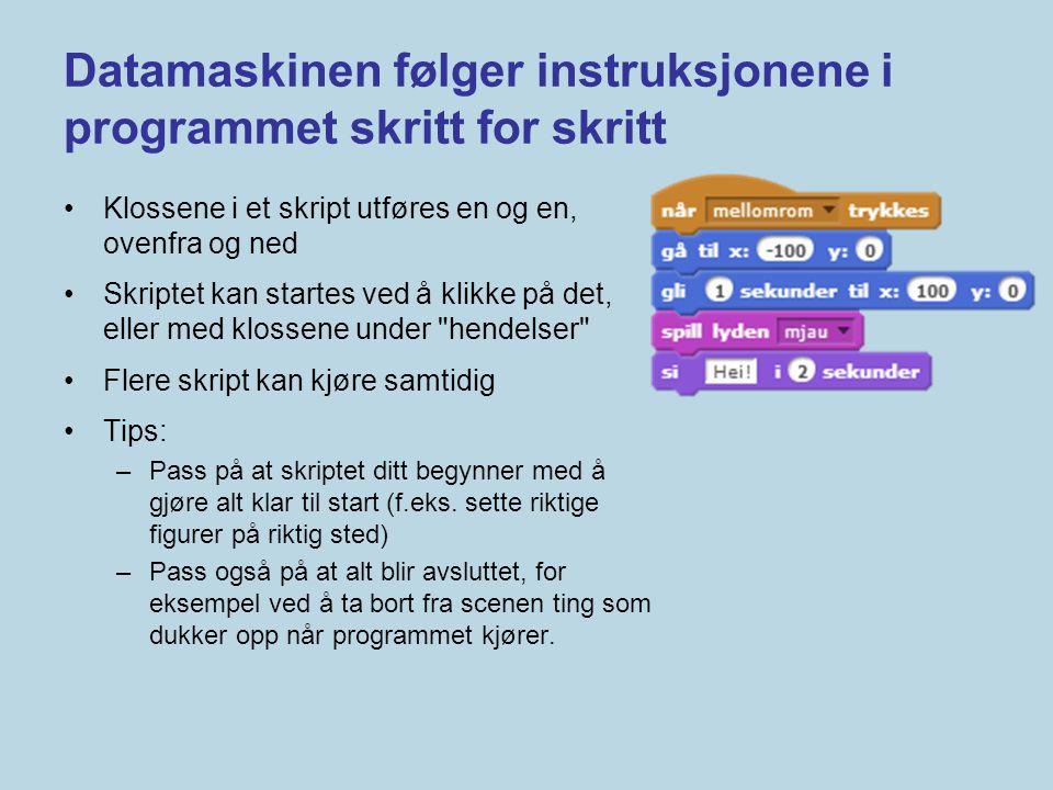Datamaskinen følger instruksjonene i programmet skritt for skritt