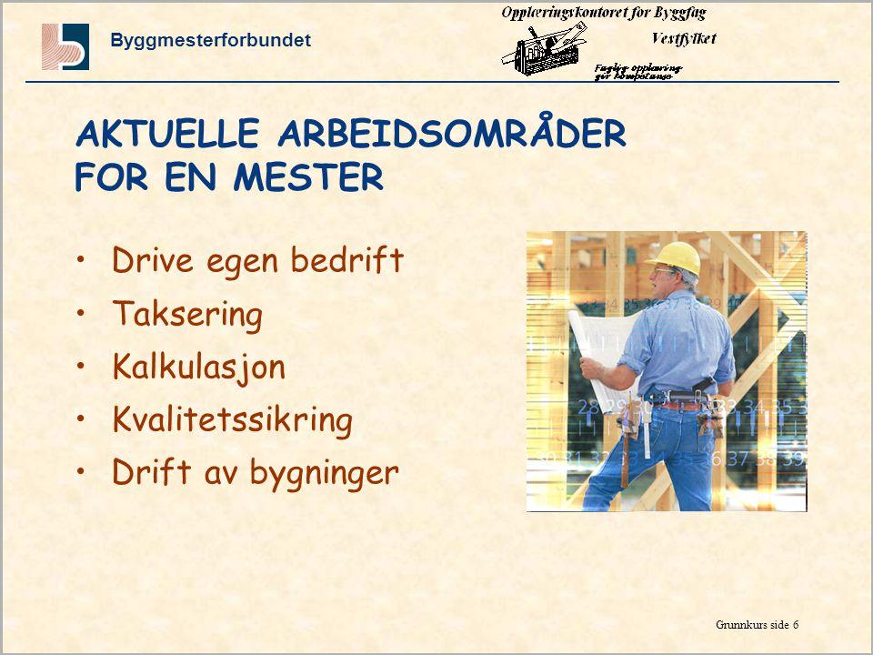 AKTUELLE ARBEIDSOMRÅDER FOR EN MESTER