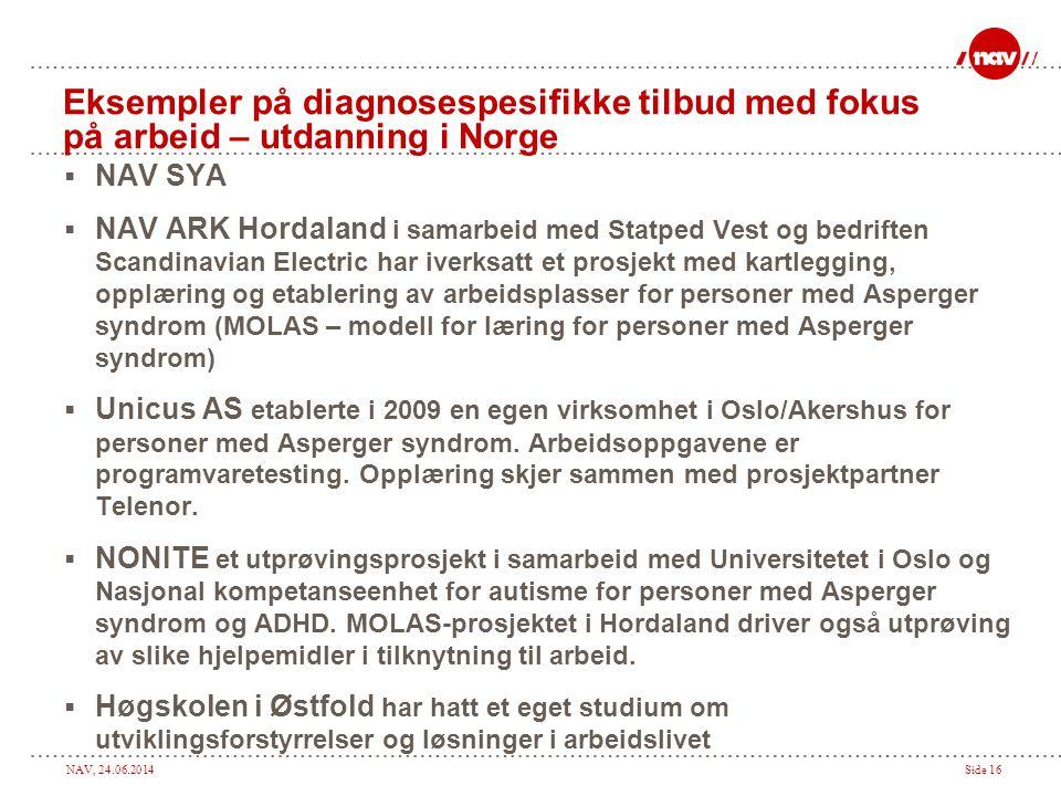 Eksempler på diagnosespesifikke tilbud med fokus på arbeid – utdanning i Norge