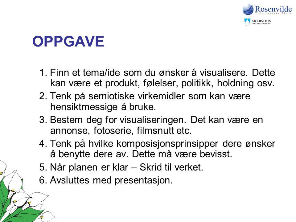 OPPGAVE 1. Finn et tema/ide som du ønsker å visualisere. Dette kan være et produkt, følelser, politikk, holdning osv.