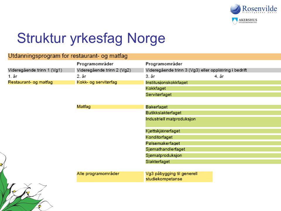 Struktur yrkesfag Norge