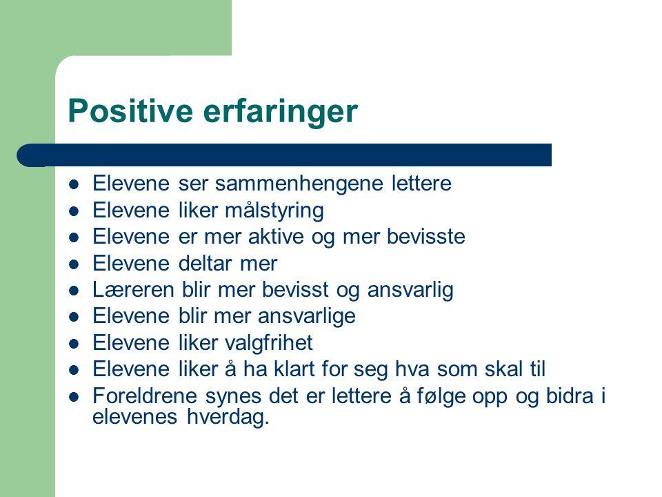 Positive erfaringer Elevene ser sammenhengene lettere