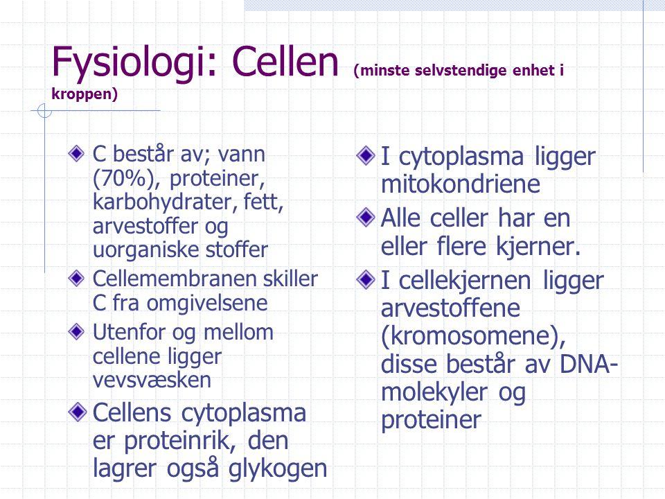 Fysiologi: Cellen (minste selvstendige enhet i kroppen)