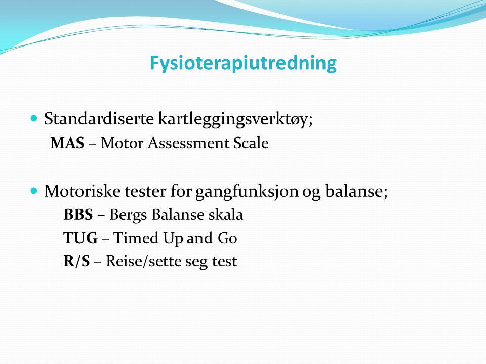 Fysioterapiutredning