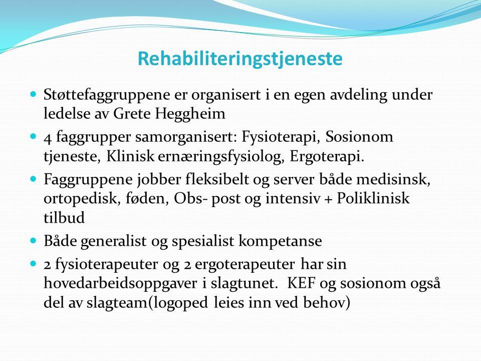 Rehabiliteringstjeneste