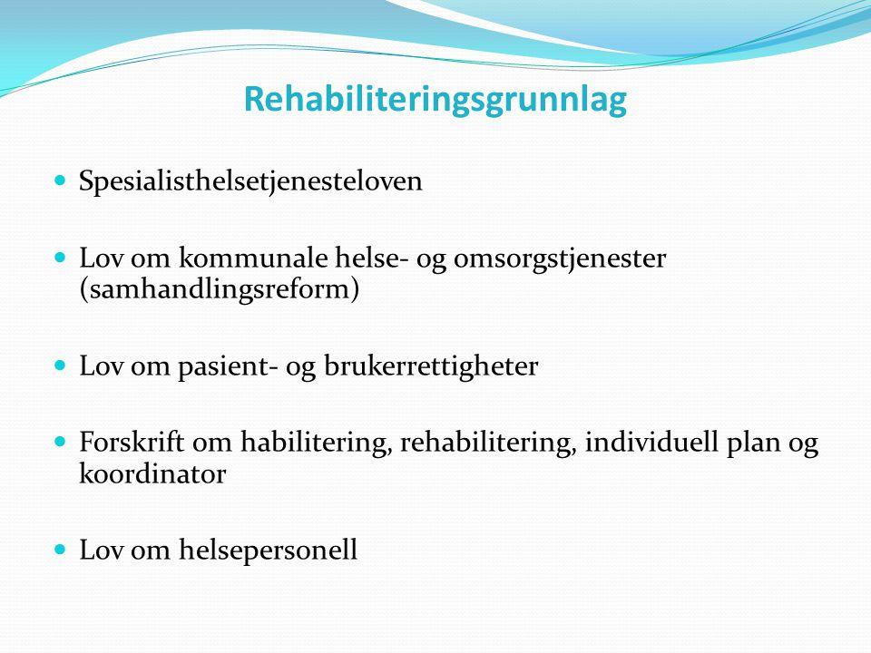 Rehabiliteringsgrunnlag