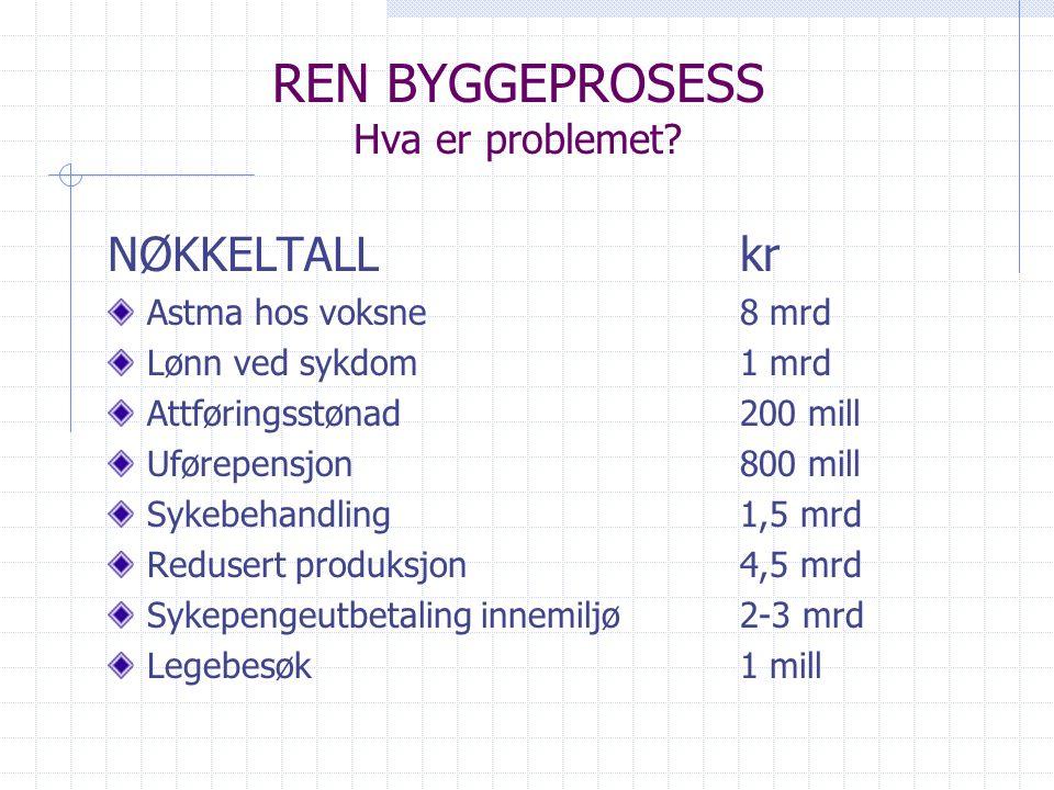 REN BYGGEPROSESS Hva er problemet
