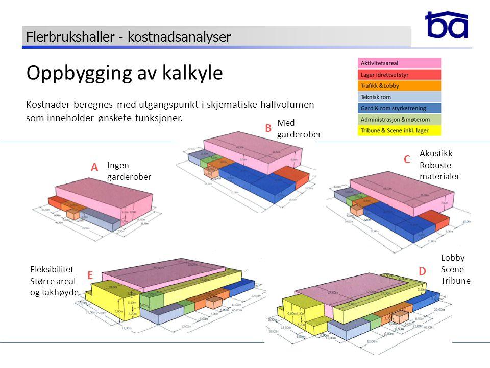 Oppbygging av kalkyle Flerbrukshaller - kostnadsanalyser B C A D E