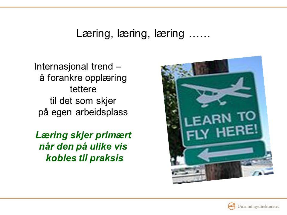 Læring, læring, læring ……
