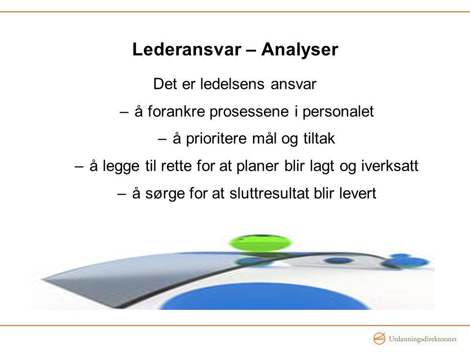 Lederansvar – Analyser