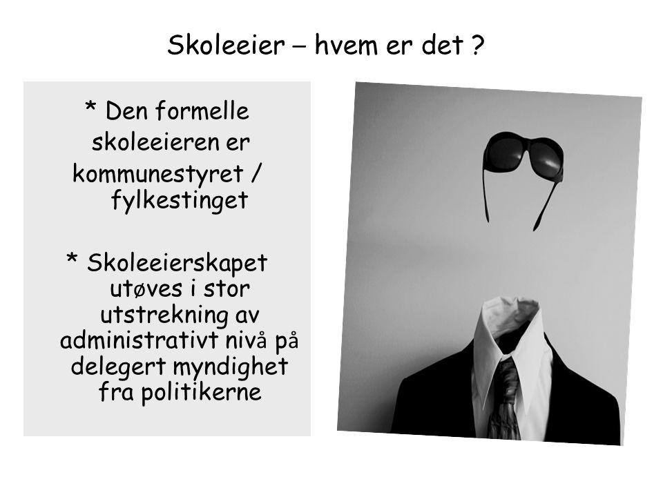 kommunestyret / fylkestinget