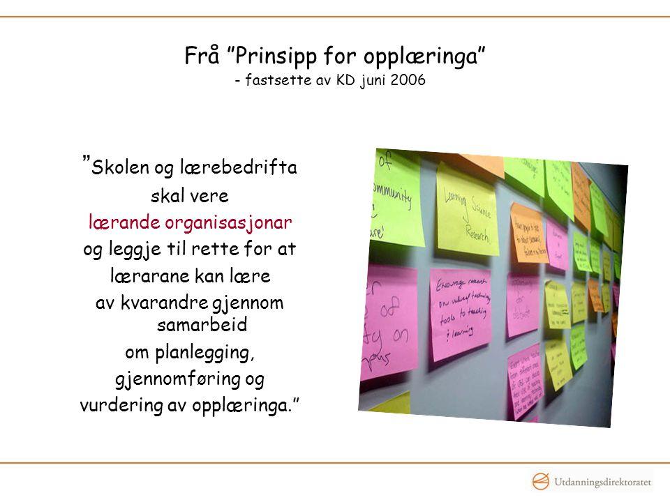 Frå Prinsipp for opplæringa - fastsette av KD juni 2006