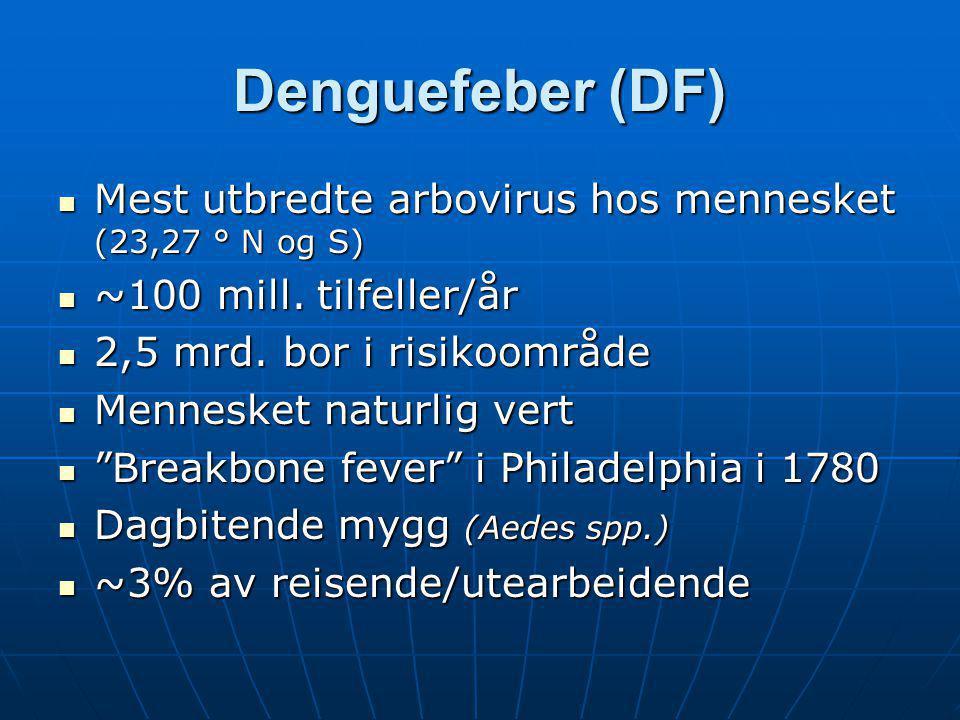 Denguefeber (DF) Mest utbredte arbovirus hos mennesket (23,27 ° N og S) ~100 mill. tilfeller/år. 2,5 mrd. bor i risikoområde.