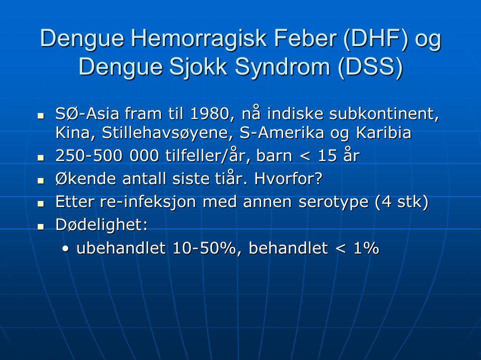 Dengue Hemorragisk Feber (DHF) og Dengue Sjokk Syndrom (DSS)